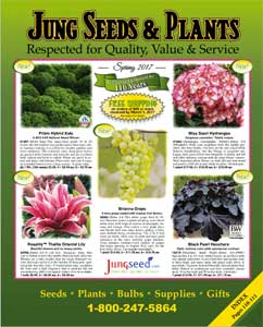 Jung Seed 2017 Catalog Cover