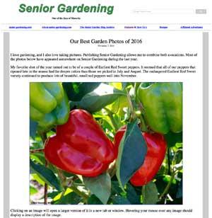 Best Garden Photos of 2016