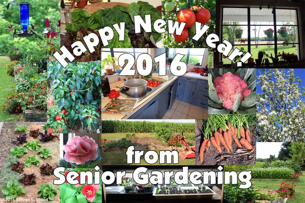 Happy New Year - 2016!