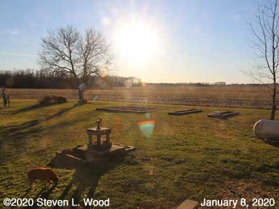 Our Senior Garden - January 8, 2020