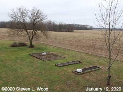 Our Senior Garden - January 12, 2020
