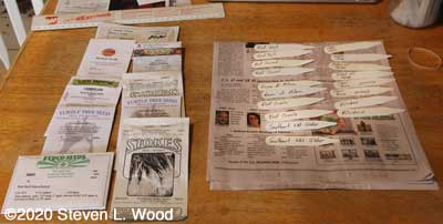 Onion seed packets and row labels