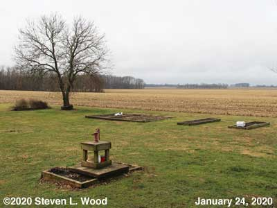 Our Senior Garden - January 24, 2020