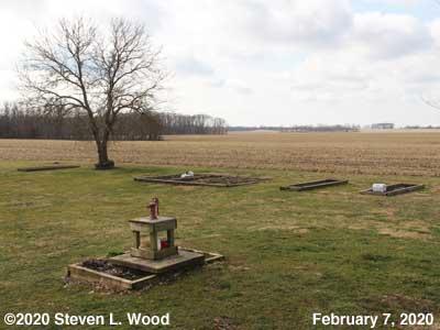 Our Senior Garden - February 7, 2020