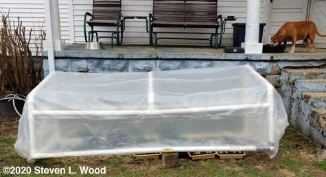 Cold frame slightly propped opoen