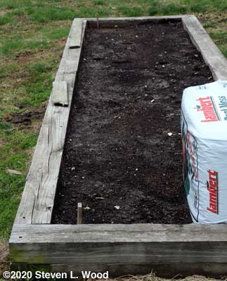 Spinach and tomato bed
