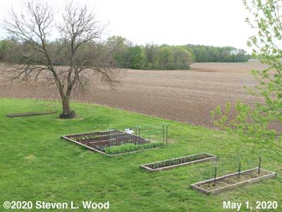 Our Senior Garden - May 1, 2020