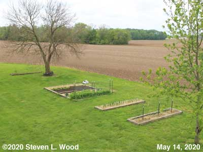 Our Senior Garden - May 14, 2020