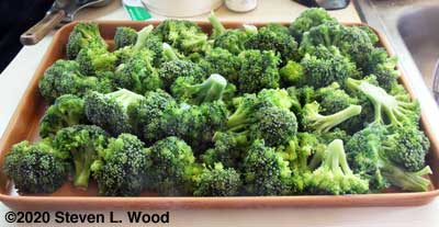 Broccoli florets frozen on cookie sheet