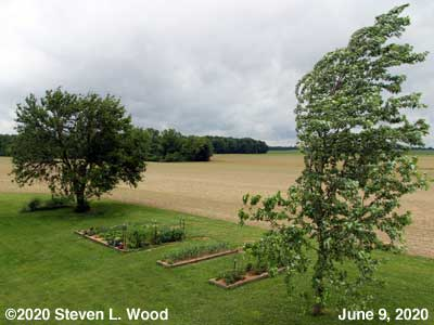 Our Senior Garden on a windy day - June 9, 2020