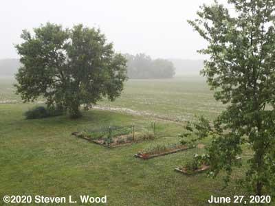 Our Senior Garden in the rain - June 27, 2020