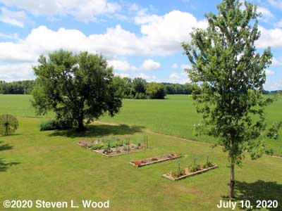 Our Senior Garden - July 10, 2020