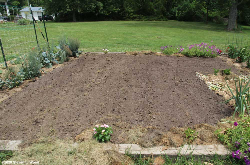 Part of main raised bed tilled and raked