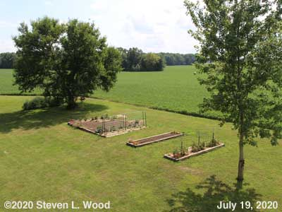 Our Senior Garden - July 19, 2020