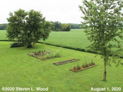 Our Senior Garden - August 1, 2020