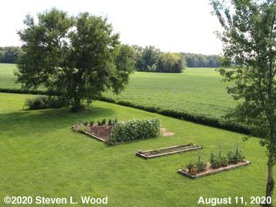 Our Senior Garden - August 11, 2020