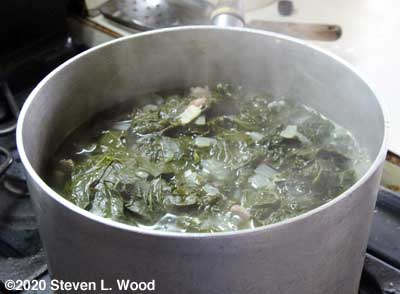Kale with onions, garlic, and bacon boiling down