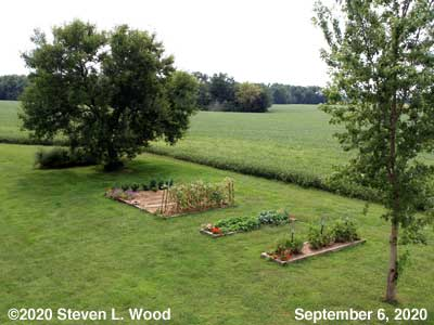 Our Senior Garden - September 6, 2020