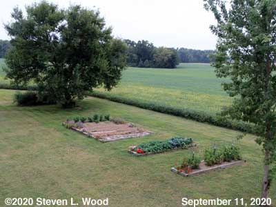 Our Senior Garden - September 11, 2020
