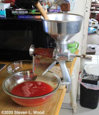 Tomatoes going through a Squeezo Strainer
