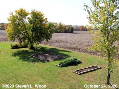 Our Senior Garden - October 24, 2020