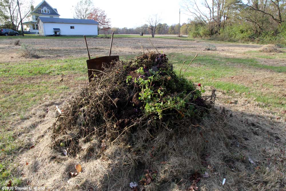 Compost pile - November 2, 2020