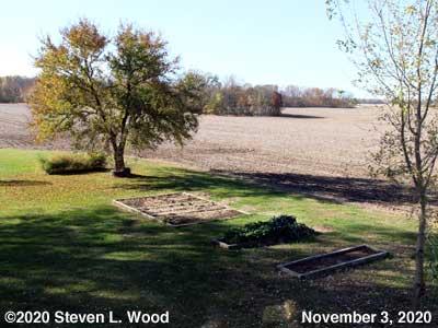 Our Senior Garden - November 3, 2020