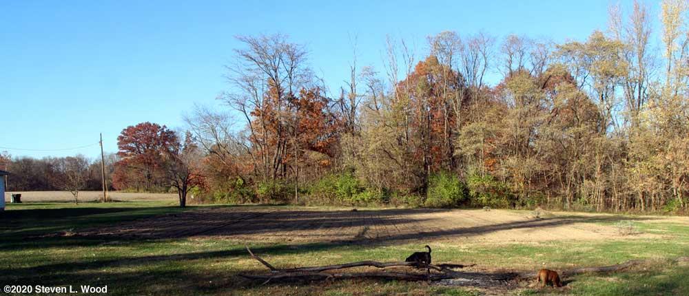 East Garden plot fall tilled