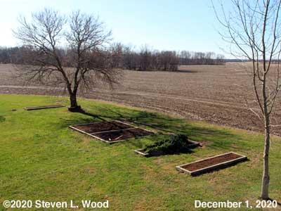Our Senior Garden - December 1, 2020