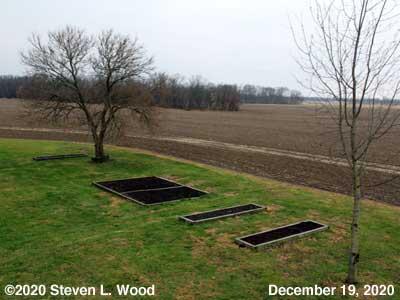 Our Senior Garden - December 19, 2020