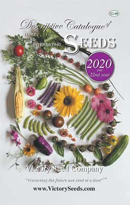 Victory Seeds 2020 Catalog Cover