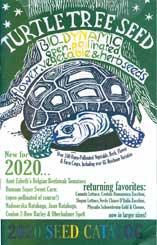 Turtle Tree Seed Initiative