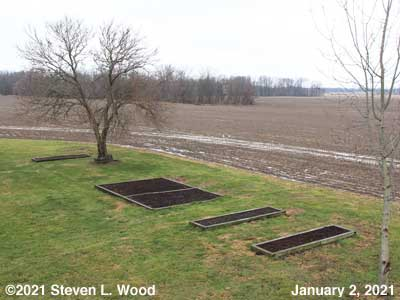 Our Senior Garden - January 2, 2021