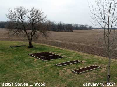 Our Senior Garden - January 10, 2021