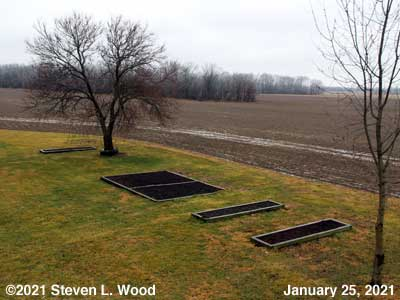 Our Senior Garden - January 25, 2021