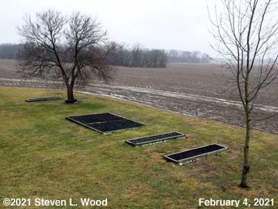 Our Senior Garden - February 4, 2021