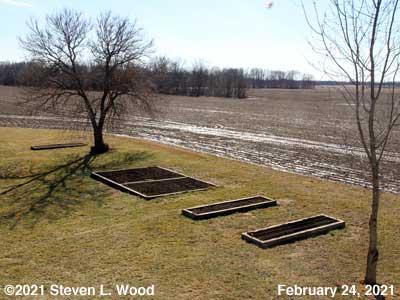 Our Senior Garden - February 24, 2021
