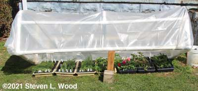 Cold frame propped partially open