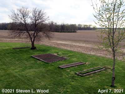 Our Senior Garden - April 7, 2021