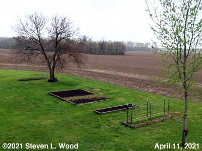 Our Senior Garden - April 11, 2021
