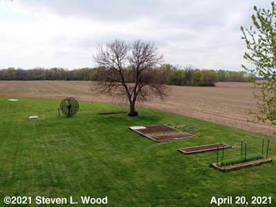 Our Senior Garden - April 20, 2021
