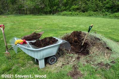 Digging and screening compost
