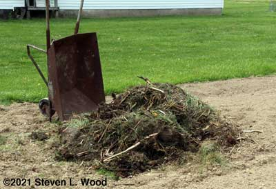 New compost pile