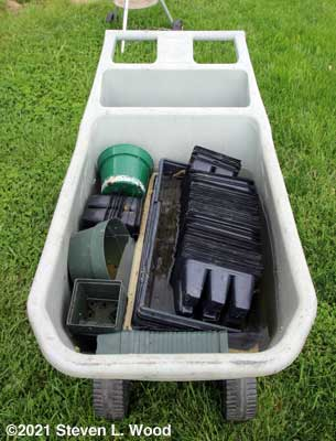 Trays, pots, and inserts soaking in bleach water