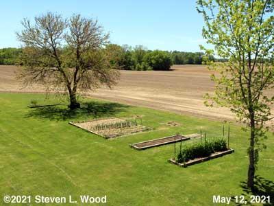 Our Senior Garden - May 12, 2021