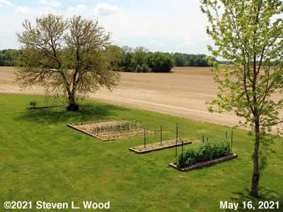 Our Senior Garden - May 16, 2021