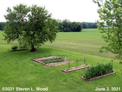 Our Senior Garden - June 3, 2021