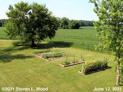 Our Senior Garden - June 12, 2021