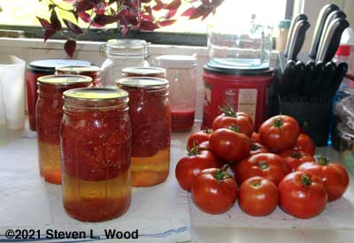 Canned and fresh tomatoes