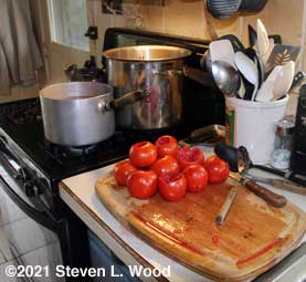 Tomatoes ready for hot water bath